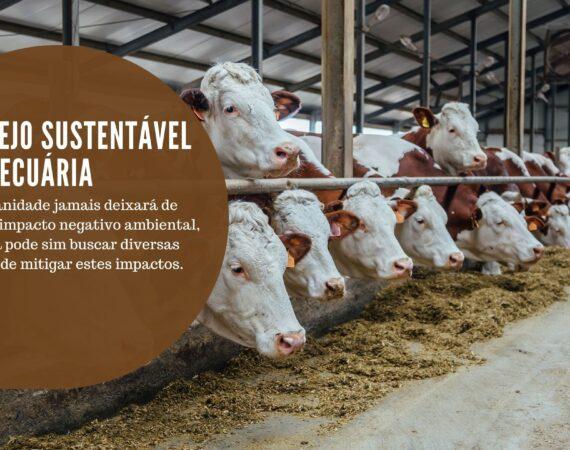 O manejo sustentável da pecuária