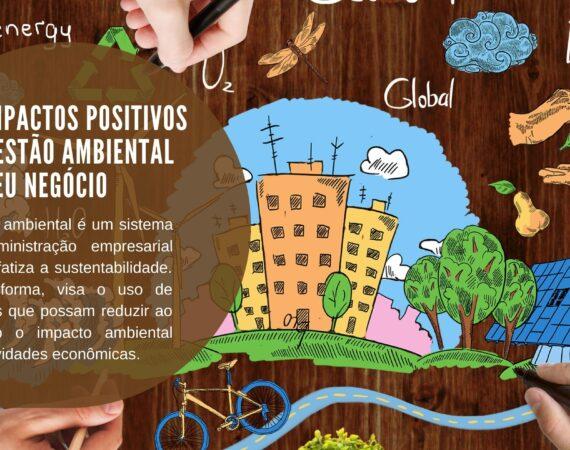 Os impactos positivos da gestão ambiental no seu negócio