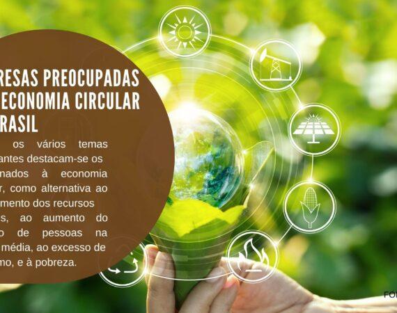 Empresas preocupadas com economia circular no Brasil